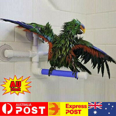 1 X 2 X Pet Birds Wall Suction Paw Grinding Stand Shower Perches Parrot Budgie