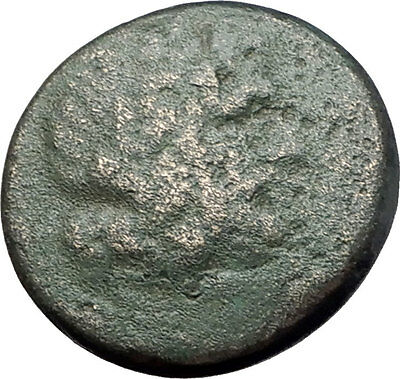 PELLA in MACEDONIA 148BC RARE R1 Authentic Ancient Greek Coin ZEUS & BULL i61465