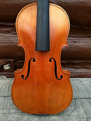 Antique Old Violin, Labeled Marengus Romanus Rinaldi