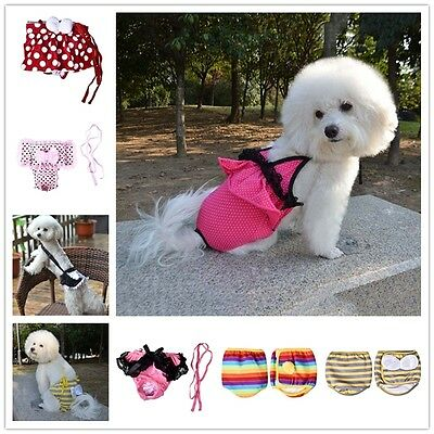 Various Pet Dog Cute Diaper Belly Bands Underwear Physiological Sanitary Pants