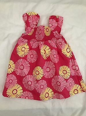 Pumpkin Patch Girls Dress Size 3-6 Months