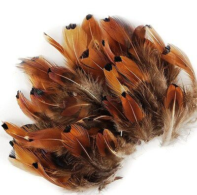 "100 Pcs PHEASANT PLUMAGE; GOLD HEART Ringneck Feathers 1-5"" (Craft/Halloween)"