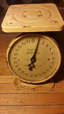 Vintage American Family 25 Pound Collectible Kitchen Counter Scale