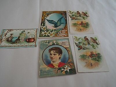 Victorian Trading Cards, 5 Cards, Woolson Spice Co Toledo Ohio, Lion coffee