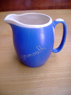Large Devon Blue Ware Jug With Lynmouth On Side