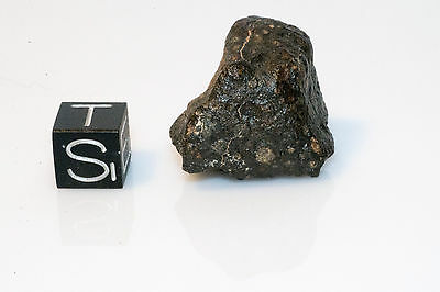 Northwest Africa 801 CR2 Meteorite