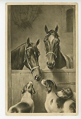 Cute Dogs talking to Horses ANTIQUE PC German AK Animals ca. 1908