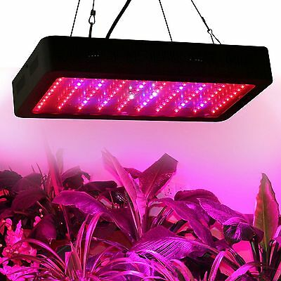 Popularow 300W LED Grow Light Black case for indoor Veg Flower Commercial lamp