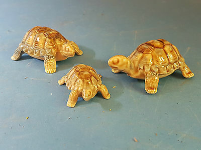 Vintage Wade Baby Tortoise Family  of Three 1960's Collectable and Cute