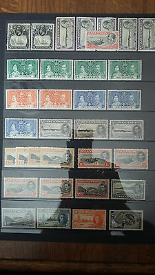ASCENSION ISLAND KGV & KGVI Mixed Collection. Perfs Unchecked MM to VLMM