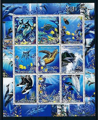 [49769] Kyrgyzstan Local issue 2000 Marine life Fish Orca Dolphins MNH Sheet