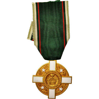 [#412056] Chile, Auricania Kingdom, Order of the South Constellation, Medal