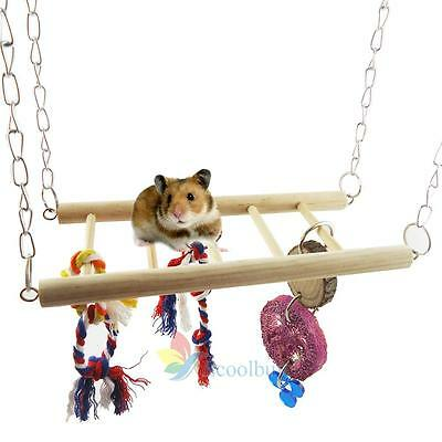 Nouvelle suspension à chaud Bridge Ladder Swing Hanging Frame Toy pour écureuil