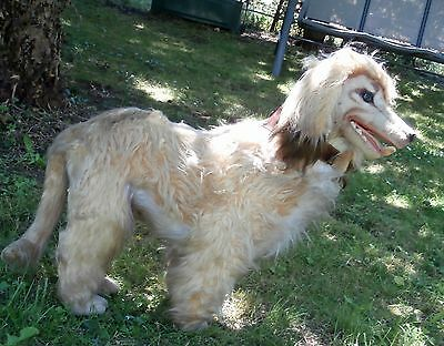 ESTATE/LARGE Store  Display  Afghan Hound stuffed magnificent  dog 30  inches
