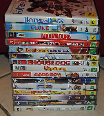 DVD Children's Dog Movie Bulk Lot - More than 10 Dog movies!