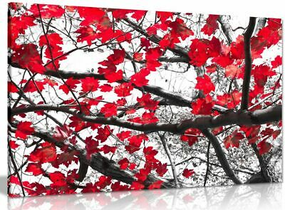 Black White Red Art Trees & Leaves Canvas Wall Art Picture Print