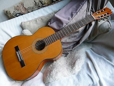 Musima Resonata 4/4 vintage classical and/or flamenco guitar