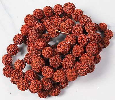 Rudraksha Beads Meditation Mala - Original from Nepal-AU Free Shipping