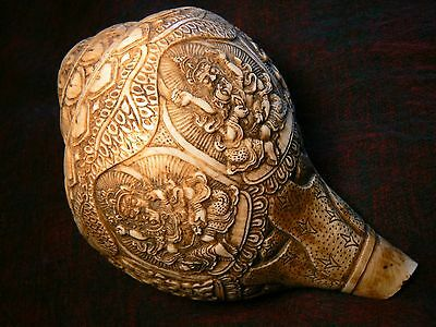 Shankha Nepal (caracola sonante tallada / carved sound making conch)