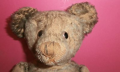 ESTATE poor  antique TEDDY  BEAR  see  STEIFF ?