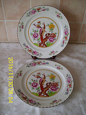 Crown Pottery Stafordshire Old Chelsea Pattern Dinner Plates Quantity 2