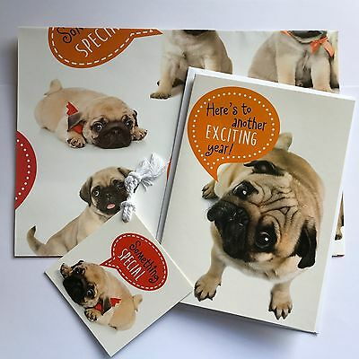 Pug Dog Wrapping Paper Gift Wrap, Tag  & Birthday Card set