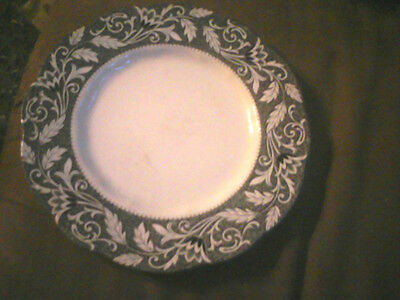 J & G Meakin Renaissance Bone and Black Dinner Plate