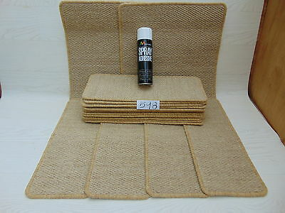 Stair pads / treads 17 off and 2 Big Mats with a FREE can of SPRAY GLUE (598-10)