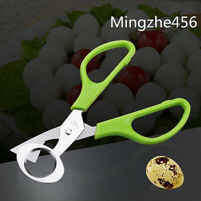Stainless Steel Quail Egg Scissors Opener Cigar Cutter Blade Tool Clipper 1Pcs