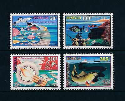 [58954] Senegal 1998 Marine life Fish Fishing MNH
