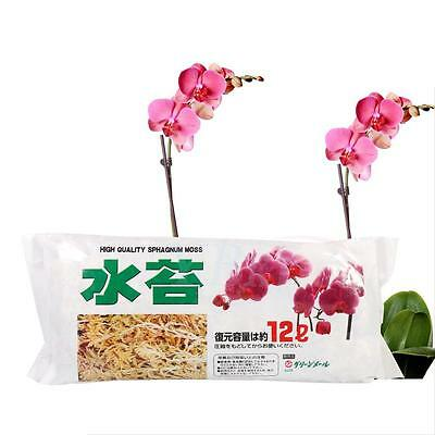 Useful Sphagnum Moss Nutrition Organic Fertilizer Moisturizing Phalaenopsis LY