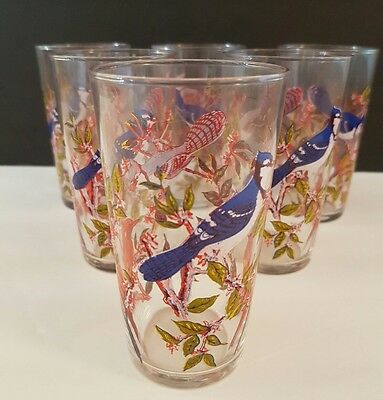 Vintage Blue Jay Drinking  Glasses Set Of 6 With Cardinals 4.5 in. High Retro