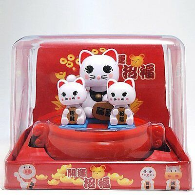 Solar Bobblehead Toy Figure - White Kitten Litter