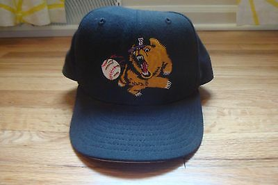 VTG Fresno Grizzlies New Era 7 5/8 hat cap old Defunct logo RARE 90s fitted 5950