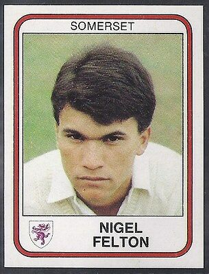 Panini-Cricket 83-#252- Somerset - Nigel Felton