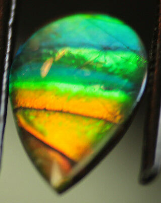 Ammolite, Ammonite Pear Quartz Capped Triplet, 12x8 mm. #2