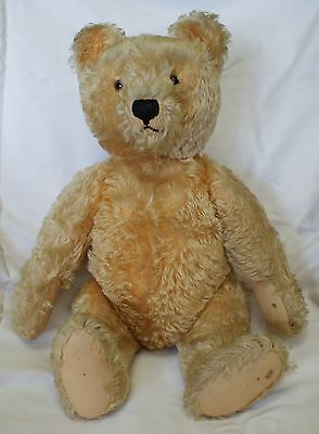 1948-1952 Fully Jointed Golden Mohair Teddy Bear Glass Eyes US Zone Germany Tag