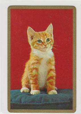 1 Single  Swap/playing Card   -   Ginger  And  White  Kitten