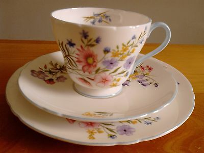 "SHELLEY Cup, Saucer and Side Plate ""Wild Flowers"""