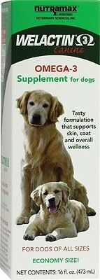 Nutramax Welactin for Dogs High-Potency Natural Salmon Oil Supplement 16 Oz