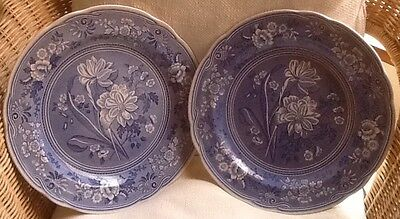 Spode The Blue Room Collection, 27cms, Botanical plates (2): excellent condition