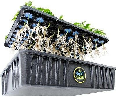 ALL NEW 2016 OxyClone 80 Site System WAY Stronger Now SAVE W/ BAY HYDRO