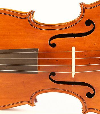 DIRECTLY FROM ITALY old 4/4 ヴァイオリン  violin P.BARBIERI 1925 geige violon