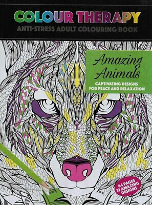 Adult Colouring Books 64 Colouring Pages 32 Designs Anti Stress Fairies Design