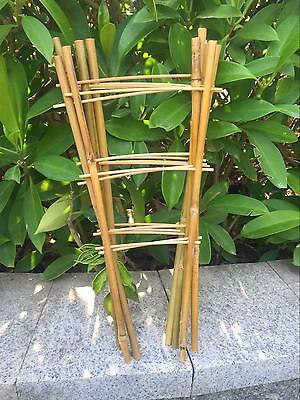 10pcs Natural Bamboo Trellis 35cm Garden Bamboo Stick Supporting Small Flowers