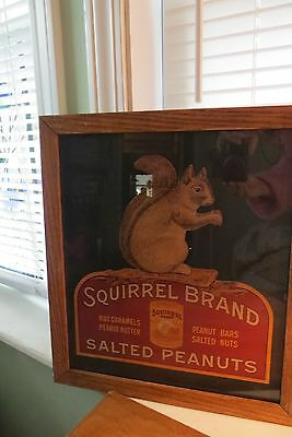 Squirrel Brand Salted Peanuts cardboard advertising sign,framed, old, butter