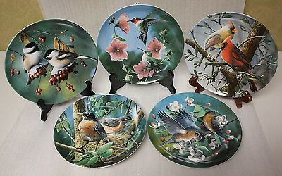 Set of 5 Knowles Plates by Kevin Daniel - Birds of Your Garden Collection 1986