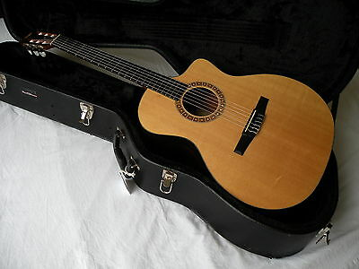 Taylor NS24ce Elec/ Acoustic - Roadrunner Hard Shell Case - Excellent Condition