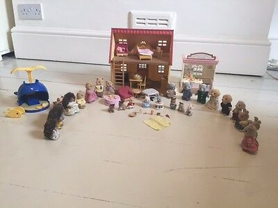 Sylvanian house, shop and dophin playground