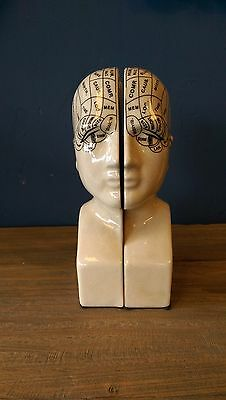 Antiqued Ceramic Phrenology Head Book Ends